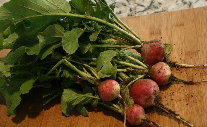 how to eat white radishes